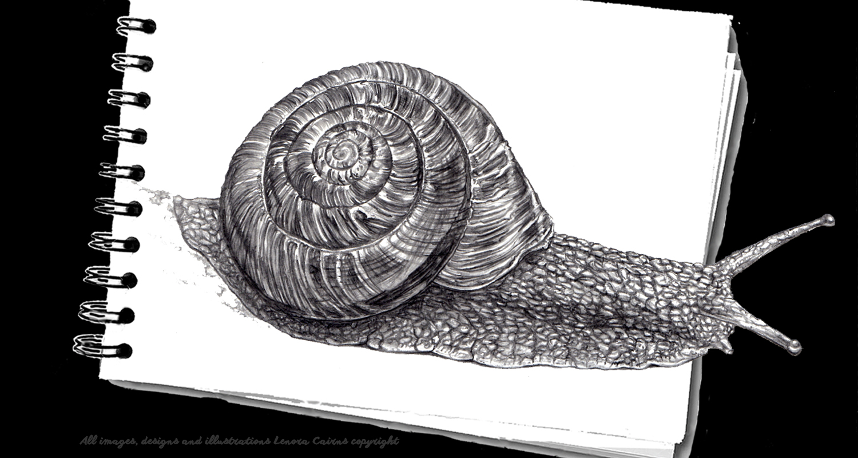 3d pencil drawing m c escher metamorphosis mural artist lenora cairns hot graphics vancouver copyright